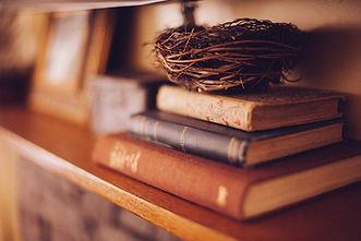 book-shelf-349934.jpg
