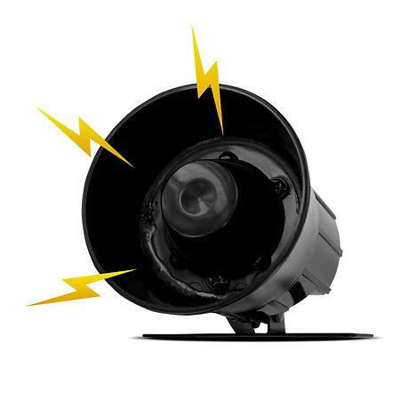 the-loudest-siren.jpg