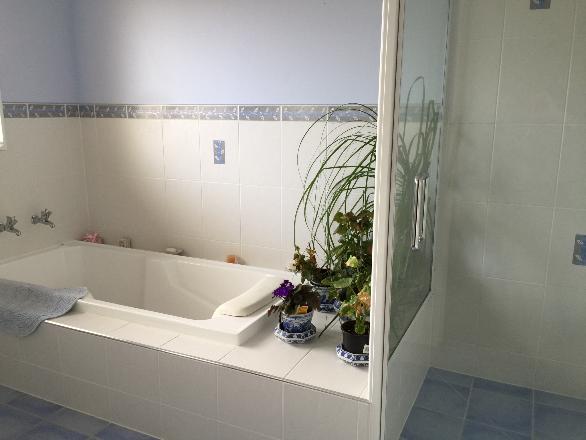 Guest's Shared Bathroom
