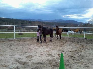 Juegos con caballos para niños