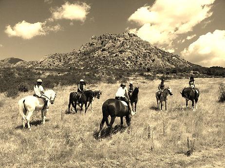 Paseos a caballo por la Sierra de los Porrones (El Boalo)