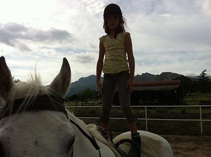 Volteo-clases de equitacion
