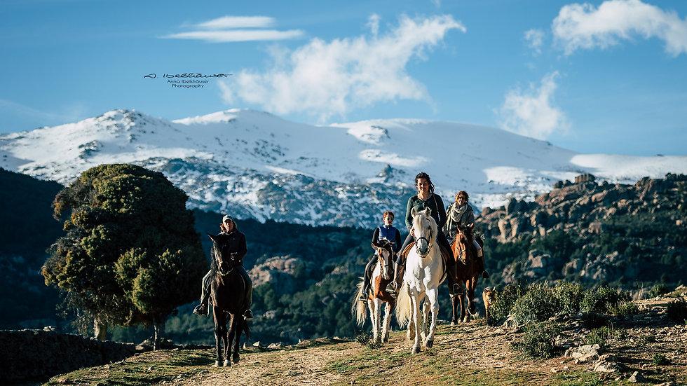 Paseo a caballo por La Pedriza 2 horas