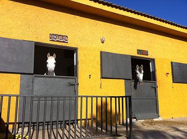 Centro de equitacion Parque Nacional Sierra de Guadarrama