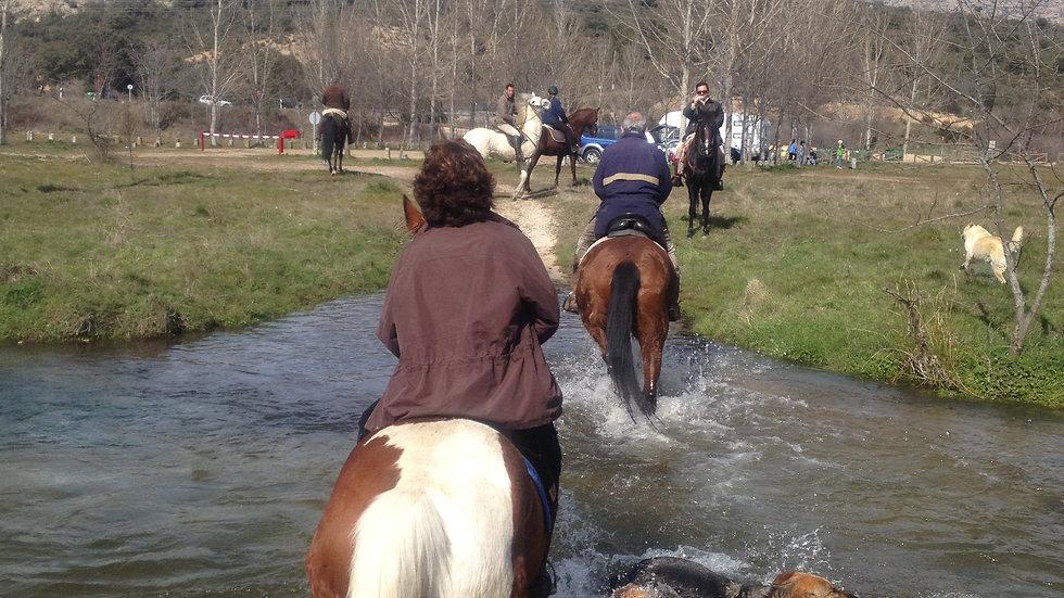 Paseo a caballo por La Pedriza 1,5 horas