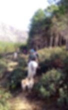 Ruta a caballo por la senda de Quebrantaherraduras