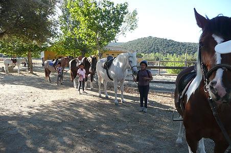 Cumpleaños a caballo en la Sierra de Madrid
