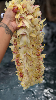 Mini Cymbidium Orchid Lei