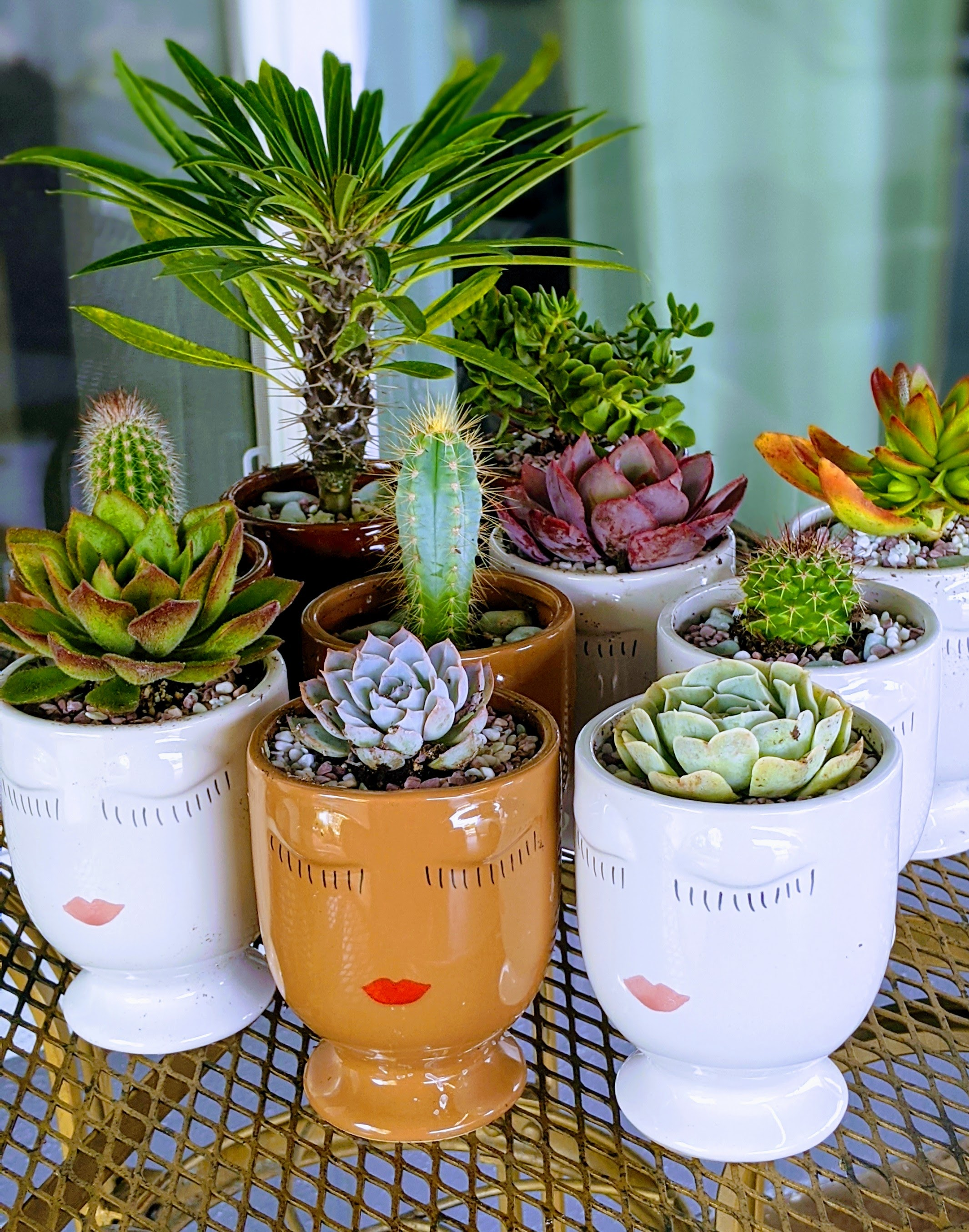 Planted Face Pot