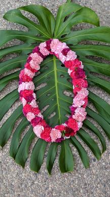 Large Mid Length Carnation Lei