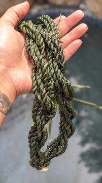 Ti Leaf Rope Strand Lei