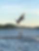 Screen Shot 2018-08-30 at 4.03.36 PM.png