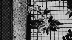 atergrillpaint1 b and w h tone big small size