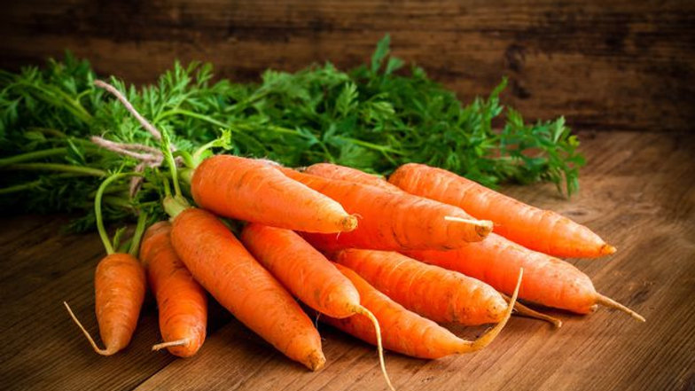 Carrot 胡萝卜