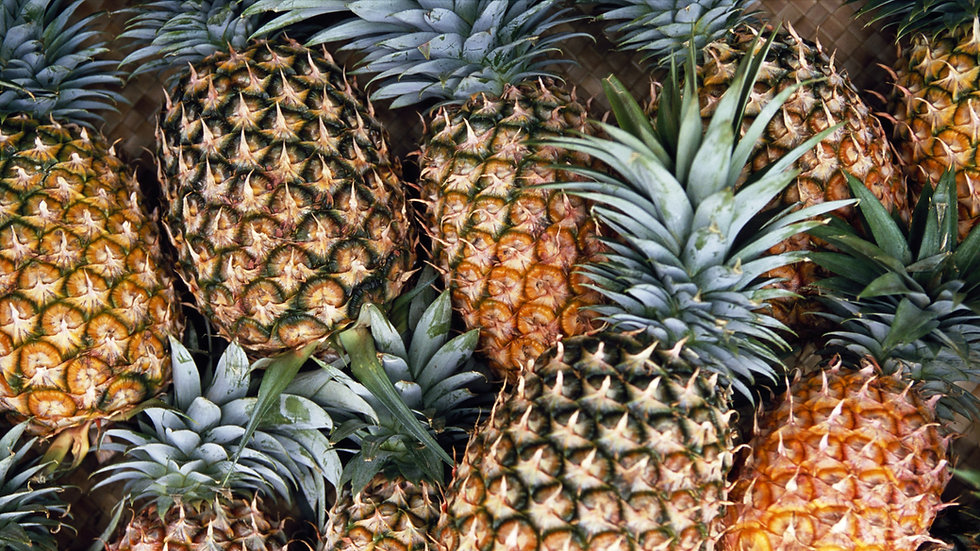 Pineapple 菠萝