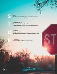 STOP Handout.jpg