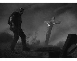 Frankenstein Theories