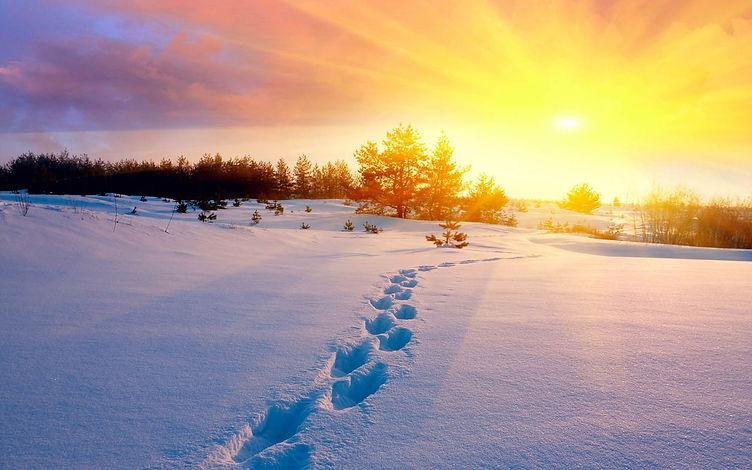 Snow Footsteps.jpg