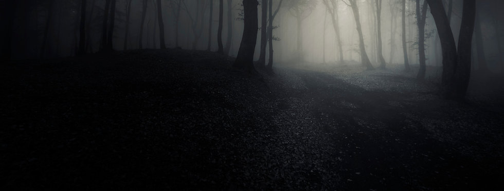 scary-woods-at-night-with-mysterious-fog