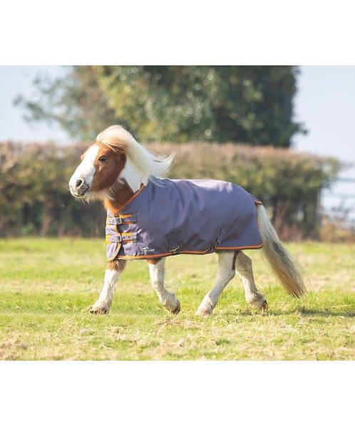 MINI/Foal HIGHLANDER