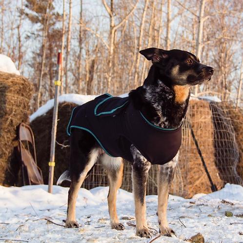 Canine Comfort & Care Shirt