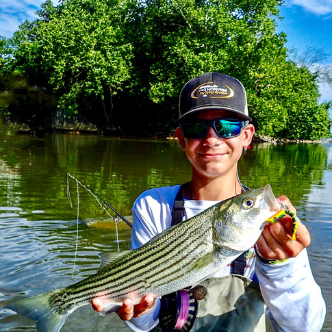 Striper Fishing in Delaware with Tim and Tyler O'Neill