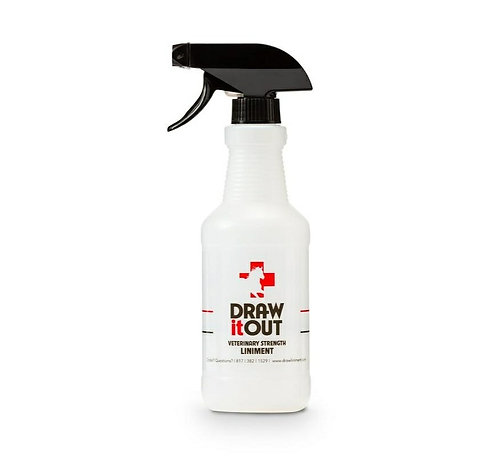 Draw It Out 16 Oz Spray Bottle