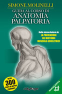 Guida al corso di anatomia palpatoria - Simone Molinelli