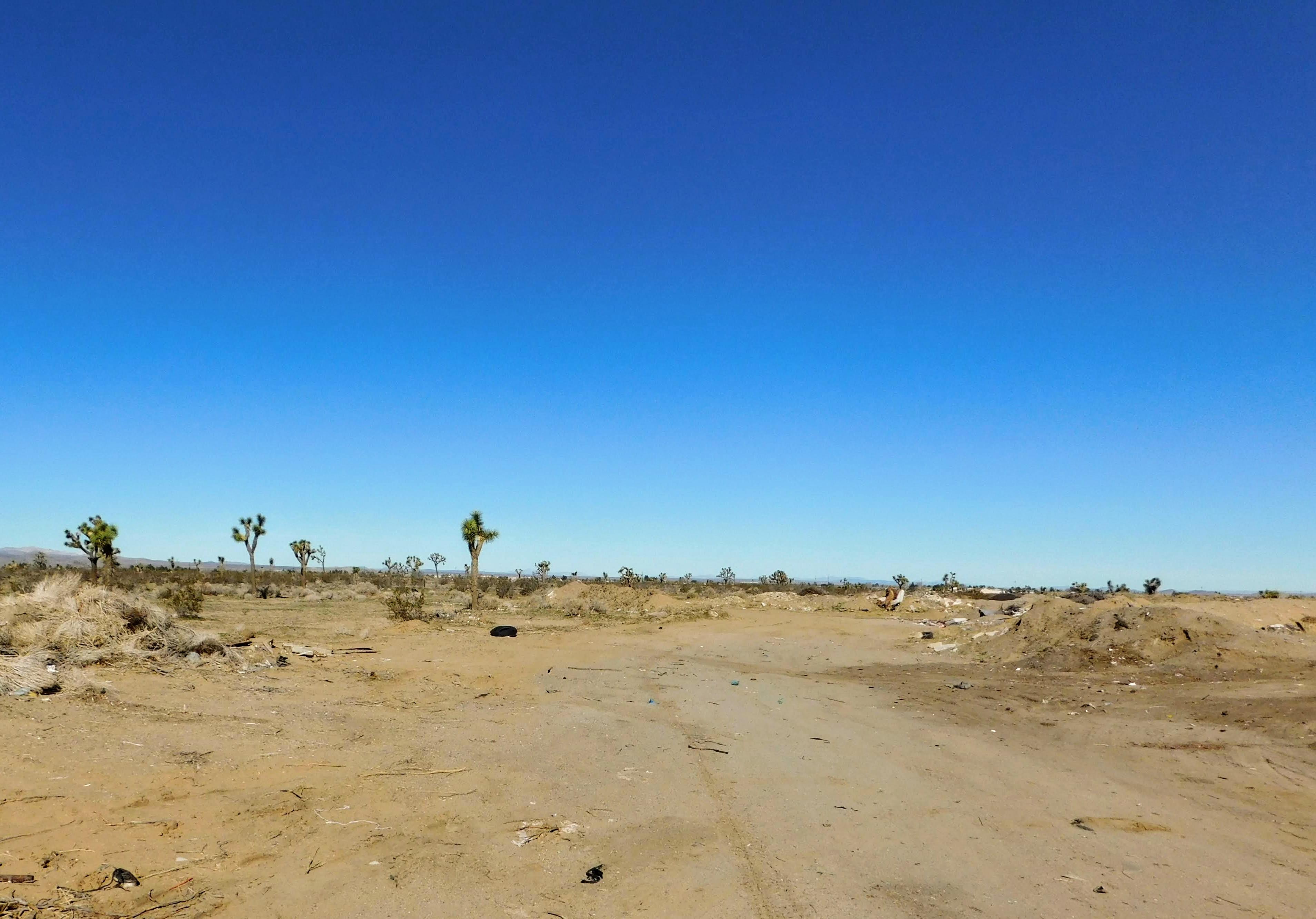 Yucca Rd