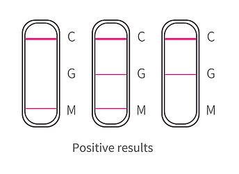 02-Positive.jpg