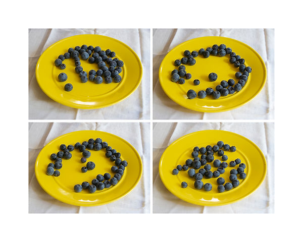 Page-Carr-Instructional blueberries low