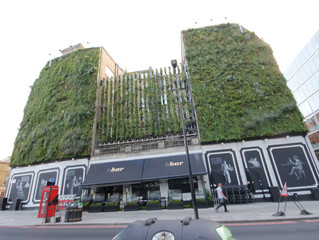 Living walls London