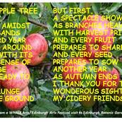 The Apple Tree by Eoghan M. Howard