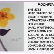 Moonfire by Emily Stevenson