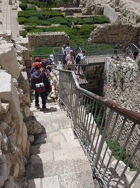 holy land family and children tour