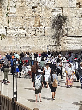 tour to the western wall in jerusalem