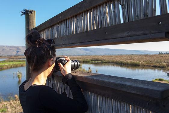 Bird Watching trip in Israel