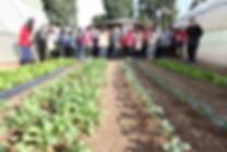 Kibbutz Agricultural Tour Israel