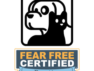 Fear Free at CPH