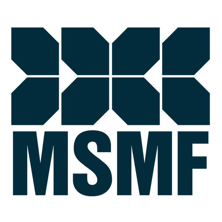 MSMF BLOCKS TRANSPARENT.png
