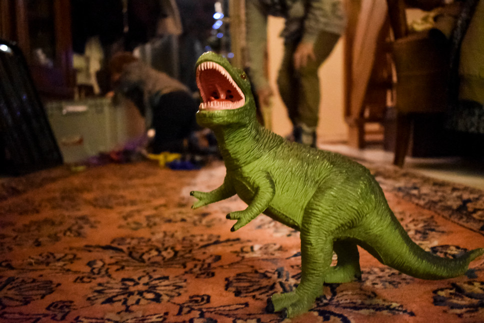 It was at a family meeting where most of the time you can find me at the kids table. I used to play with a dinosaur just like this. I loved it to see it back because it brought me back.