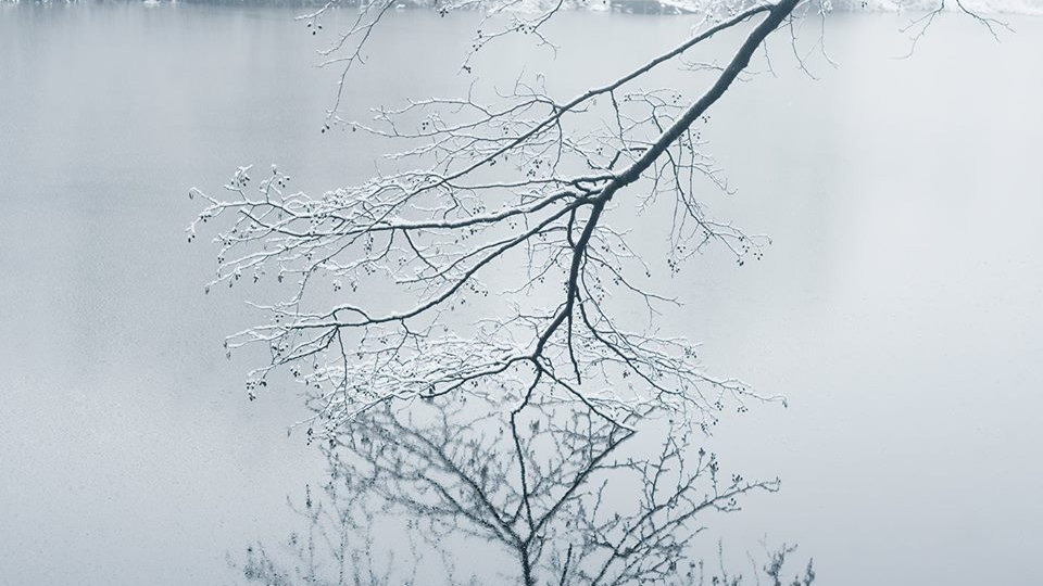 Dimitri Bogachuk              Landscape #6