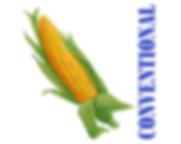 Arrow Hybrid Seed Conventional Corn