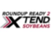 Arrow Hybrid Seed RR2 Xtend Soybeans