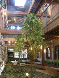 Courtyard space Majesitc Stove Lofts