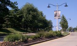 View of Parkway Median