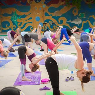 учебная йога для всех