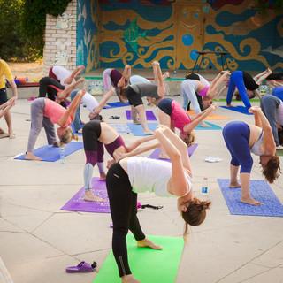 изучение йоги