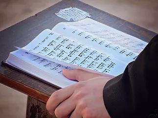 Torah.png