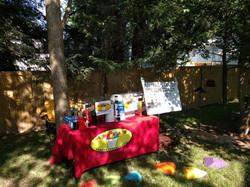 party setup
